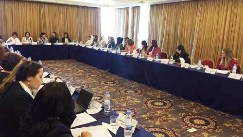 مهارات اعداد التقارير المرفوعة إلى لجنة اتفاقية القضاء على جميع أشكال التمييز ضد المرأة (سيداو)