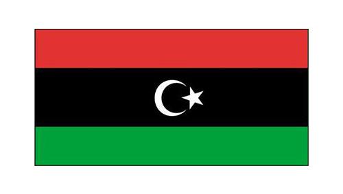 المرأة الليبية ضيفة الصالون الثقافي لمنظمة المرأة العربية