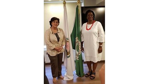 منظمة المرأة العربية تستقبل ممثلة هيئة الأمم المتحدة للمرأة في اثيوبيا واللجنة الاقتصادية لإفريقيا