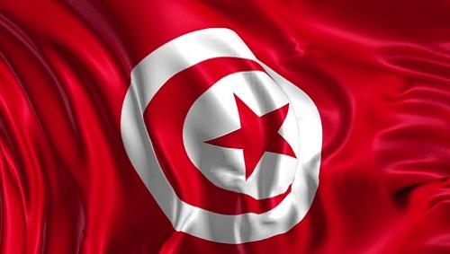 انطلاق أعمال الدورة التدريببة  في مجال تنمية القدرات السياسية  للمرأة العربية بالجمهورية التونسية