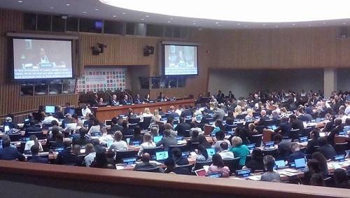 منظمة المرأة العربية تشارك في المنتدى السياسي حول التنمية المستدامة في نيويورك