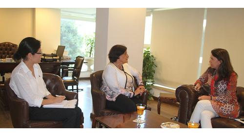منظمة المرأة العربية تستقبل المدير الإقليمي بالإنابة للمكتب الإقليمي لهيئة الأمم المتحدة للمرأة