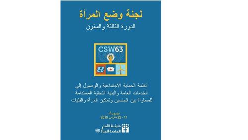 منظمة المرأة العربية تشارك في لجنة وضع المرأة (63) بالأمم المتحدة